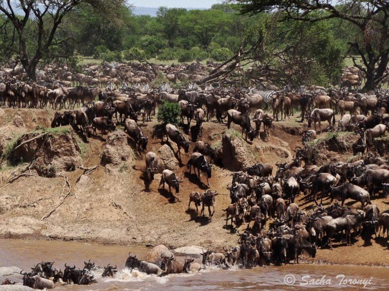 Explore East Africa